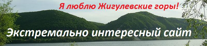 Сайт алексея воронцова торсунов